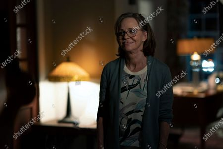 Sally Field as Janice