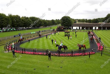 Editorial picture of Horse Racing from Newmarket Racecourse, UK - 09 Jul  2020
