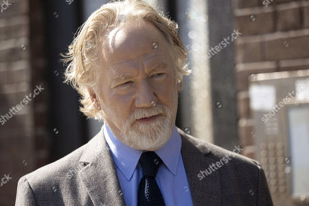 Timothy Busfield as Henry Roswell
