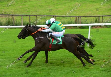 Downpatrick INSANE BOLT and Davy Russell (green & white) jump the last to win the Randox Health Handicap Hurdle from KILMURRY and Niall Madden (green & yellow). Healy Racing