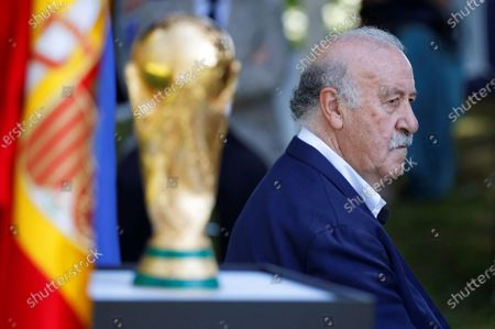 Editorial image of 10th anniversary of Spain's victory in the 2010 FIFA World Cup, Madrid - 10 Jul 2020