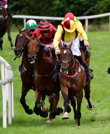 Kilbeggan FREEWHEELIN DYLAN & Ricky Doyle (yellow) win the Midlands National from THREE MUSKATEERS & Davy Russell (Red)