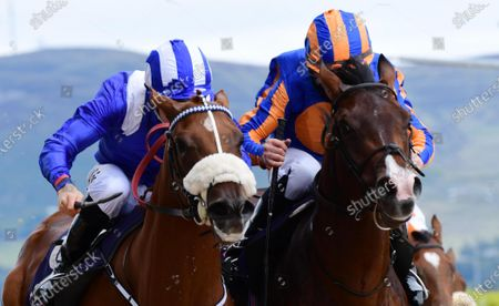 Dundalk MAHAASEEL and Gary Halpin (left) win the Irish Stallion Farms EBF Maiden from HYDE PARK BARRACKS and Michael Hussey (right). Healy Racing