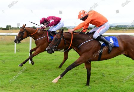 Roscommon THE VERY MAN & Sean O'Keeffe(far side) win the Thanks To All Our Frontline Workers Hurdle from stable companion RECENT REVELATIONS & Davy Russell (near side).