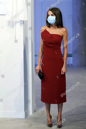 Queen Letizia of Spain attends a dinner in honour of 'Mariano de Cavia', 'Mingote' and 'Luca de Tena' Awards celebrating its 100 edition at ABC o