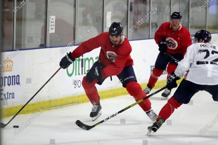 Stock Photo of Florida Panthers' Brian Boyle, left, skates with the puck during NHL hockey training camp, in Coral Springs, Fla
