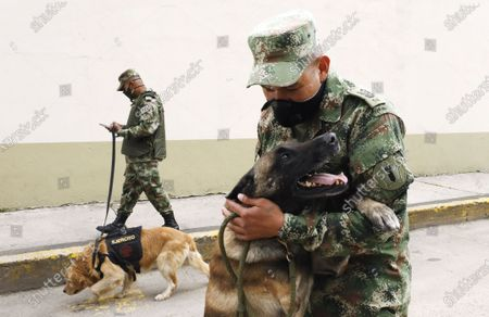 Soldier Diego Montenegro (R) and his explosives detector dog Iker, injured during combat maneuvers, play in Bogota, Colombia, 15 July 2020. Businessman Howard Buffed donated 650 million pesos (some three million US dollars) to the health of the dogs that work with the armed forces in combat zones.