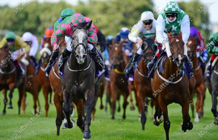 LEOPARDSTOWN. TAKE MY HAND and Gary Carroll (grey horse) wins the Leopardstown Handicap from Sweet Justice (Cheekpieces). Healy Racing