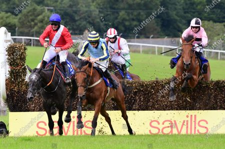 Tramore RAZOUL & Donagh Meyler jump the last to win the Newtown Cove Beginners Steeplechase from ZAMBEZI FIX & Davy Russell.