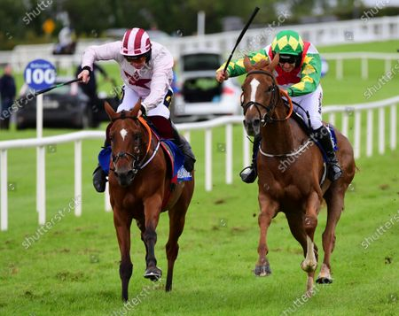 Stock Picture of Ballinrobe RAMBLING ROSE & Patrick Mullins (right) win the Tim Kelly Group Mares Flat Race from THE SLIDING ROCK & Jamie Codd (left)