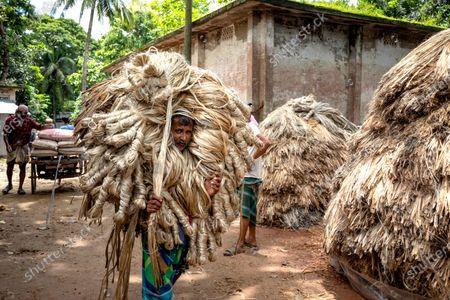 Editorial image of Bundles of jute fibre, Manikganj, Bangladesh - 22 Jul 2020