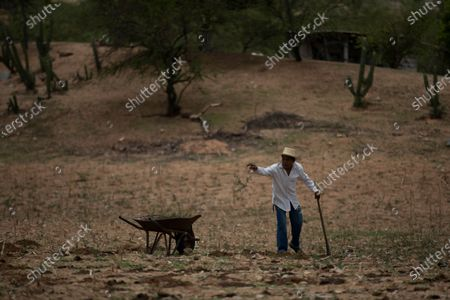 Jorge Vazquez prepares a field to plant corn in San Jeronimo Xayacatlan, a town in Mexico from where nearly a third have emigrated to New York, . Trained as a nurse, the 42-year-old has returned home for good from New York where he emigrated twice