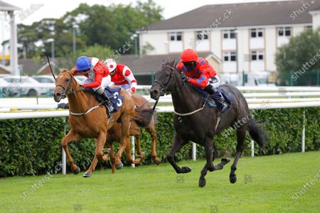 Blackberry and Graham Lee win the Visit attheraces.com Fillies Novice Stakes at Doncaster from Credible.