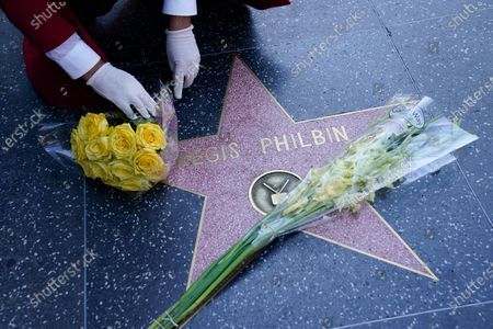 Stock Photo of Gregg Donovan, unofficial ambassador of Hollywood, lays flowers on Regis Philbin's star on the Hollywood Walk of Fame, in the Hollywood area of Los Angeles. Legendary television personality Philbin has died, at age 88