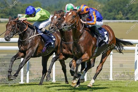 CHICHESTER, ENGLAND - JULY 30: Ryan Moore riding Mogul (R, blue/orange) win The John Pearce Racing Gordon Stakes from Highland Chief (pink/green) at Goodwood Racecourse on July 30, 2020 in Chichester, England. (Photo by Alan Crowhurst/Getty Images) supplied by Hugh Routledge.