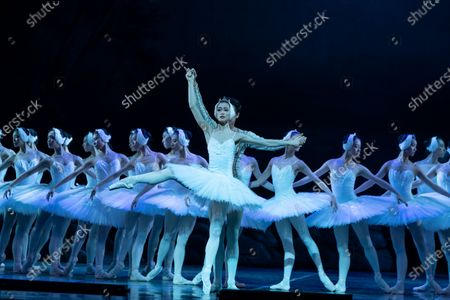 Qi Bingxue as Odette, Wu Husheng as Siegfried and Corps de Ballet perform Grand Swan Lake by Shanghai Ballet during press preview at Lincoln Center David Koch Theater