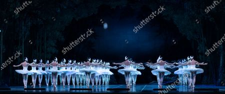 Dancers of Corps de Ballet perform Grand Swan Lake by Shanghai Ballet during press preview at Lincoln Center David Koch Theater