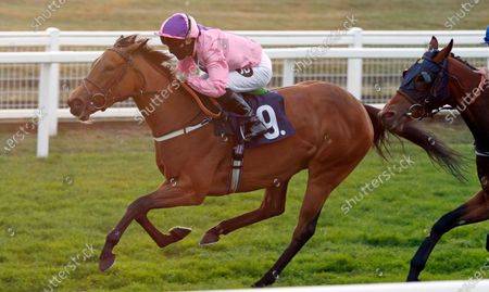 Stock Image of LIBRETTI (Tom Queally) wins The Visit attheraces.com Handicap Yarmouth