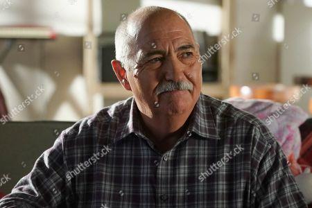 Miguel Sandoval as Pruitt Herrera