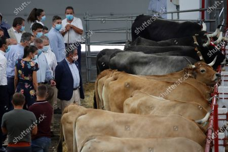 King Felipe VI (L), Queen Letizia (C) of Spain and Cantabria's regional President, Miguel Angel Revilla (R), visit the National Cattle Market in Torrelavega, Cantabria, Spain, 29 July 2020. The Royal couple are visiting cities around the country to see the different social and economic situations after the coronavirus lockdown.