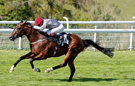 Stock Picture of TORO STRIKE (Oisin Murphy) wins The Theo Fennell Handicap Goodwood