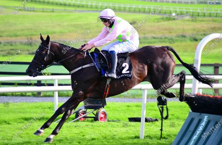 Galway JON SNOW & Paul Townend jump the last to win the Guinness Novice Hurdle.
