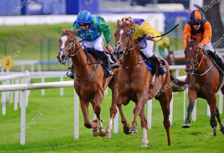GALWAY. SLIGE DALA and Tom Hamilton (centre) win the Guinness Time Flat Race from Power Of Pause (left). Healy Racing