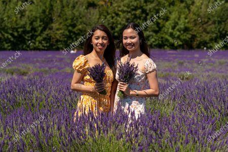 Nikki Hilario and Nikki Hilario enjoy day trip to Mayfield Lavender Farm.