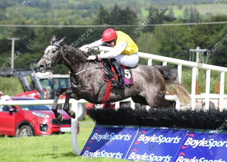 NAAS MISTY MOUNTAIN and Liam McKenna jump the last to win The O'Hehir's Bakery Mares Maiden. Healy Racing