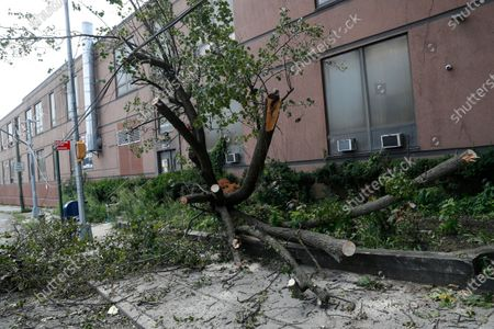 Downed trees and damaged power lines are visible near the Middle Village area of Queens, in New York, in the wake of Tropical Storm Isaias which blew through the area Tuesday. New York Mayor Bill DeBlasio said over 130,000 people in New York city were without power, but that crews were working to restore it all over the city