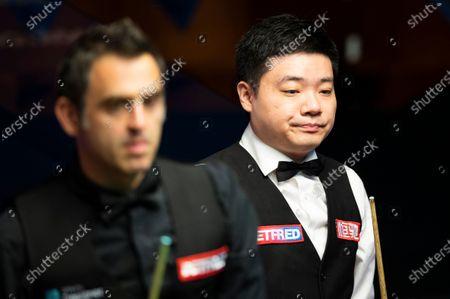 Stock Photo of Ding Junhui