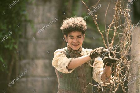 Amir Wilson as Dickon