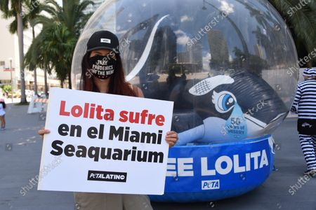 "Silvia Meneses stands with Lolita. 50 Years to the Day: 'Orca' in a fishbowl shames Anniversary of Lolita's Capture. PETA Supporters - including model and online influencer Natasha Araos and actor and Miss Universe 1996 Alicia Machado, and accompanied by a giant inflatable orca trapped in a fishbowl and holding ""Free Lolita!"" signs."