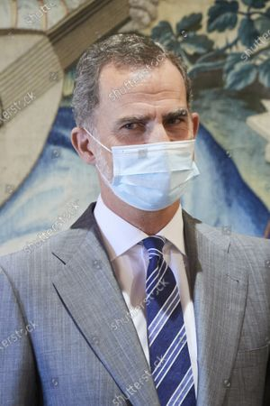 King Felipe VI during an audience at Almudaina palace
