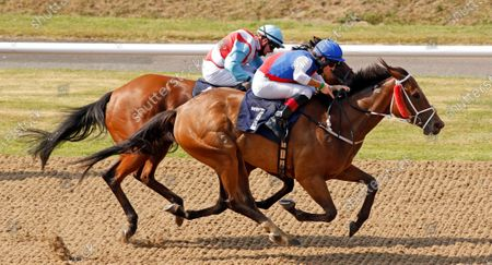 Editorial image of Horse Racing - 11 Aug 2020