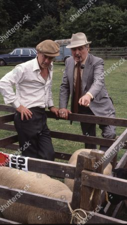 Stock Picture of Emmerdale Farm - Ep 548 Thursday 24th January 1980  The Connelton Show takes place. Sam wins first prize with his onions and Matt wins first prize with his against NY Estates. With Jesse Gillin, as played by John Abineri ; Maurice Westrop, as played by Edward Dentith.