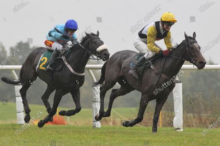 Race winner Ironical ridden by Tom Scudamore (L) chases down Shabak Hom ridden by Richard Evans in the Support Norfolk Hospice Novices Handicap Hurdle