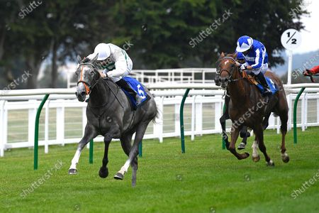 Winner of The British Stallion Studs EBF Upavon Fillies' Stakes  Alpinistar (white) ridden by Ryan Tate and trained by Sir Mark Prescott during Horse Racing at Salisbury Racecourse on 13th August 2020