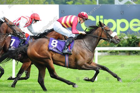 LEOPARDSTOWN 13-August-2020. PISTA and Shane Crosse gets up to beat SUNCHART (Andrew Slattery) for owner Scott C Heider and trainer Joseph O'Brien.