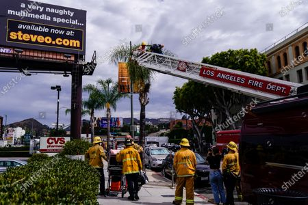 """Actor Steve-O is seen being brought down from a Hollywood billboard by fire department officials along Cahuenga Boulevard on Thursday, Aug. 13, 2020 in Los Angeles, CA. Steve-O, the star from MTV's Jackass series, is promoting his new project, """"Gnarly."""" (Kent Nishimura / Los Angeles Times)"""