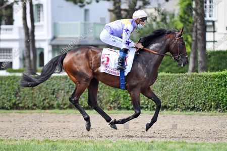 , Deauville, The Summit with Olivier Peslier at Deauville racecourse, France.