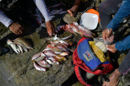 Editorial photo of Virus Outbreak - Fishing, La Guaira, Venezuela - 14 Aug 2020