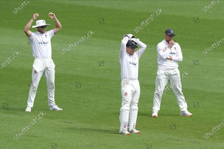 Stock Image of The Sussex slip cordon after an LBW appeal against Sir Alistair Cook was turned down by Umpire Ian Gould during the Bob Willis Trophy match between Sussex County Cricket Club and Essex County Cricket Club at the 1st Central County Ground, Hove