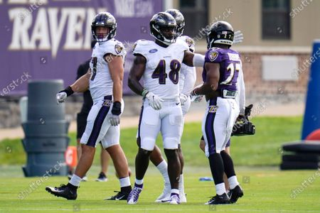 Baltimore Ravens 2020 draft selections linebacker Patrick Queen (48), first round, and running back J.K. Dobbins (27), second round, talk during an NFL football camp practice, in Owings Mills, Md