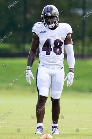 Baltimore Ravens 2020 first round draft selection linebacker Patrick Queen looks on during an NFL football camp practice, in Owings Mills, Md