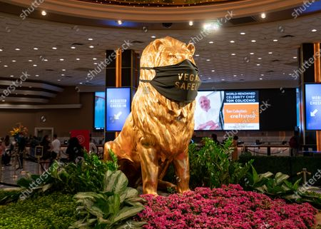 General views of MGM's Leo the Lion at the MGM Grand Las Vegas Hotel & Casino, wearing a health mask that reads 'Vegas Safely'