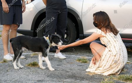 """Aubrey Plaza, a cast member in """"The Little Hours,"""" greets a dog before a drive-in screening of the film presented by ArcLight Cinemas at the Vineland Drive-In theater, in Industry, Calif"""