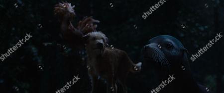 Henrietta (Chaka Khan), Bob the dog (Danny DeVito) and Frankie (Mike White)