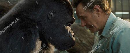 Ivan (Sam Rockwell) and Bryan Cranston as Mack