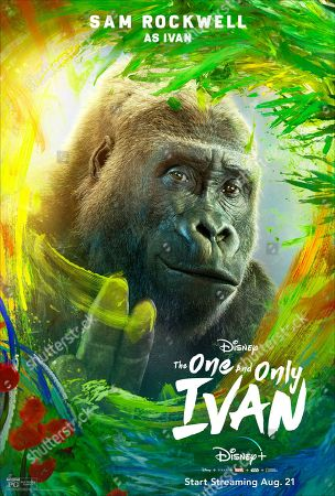 Stock Photo of The One and Only Ivan (2020) Poster Art. Ivan (Sam Rockwell)